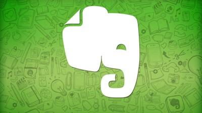 зеленый слон фото