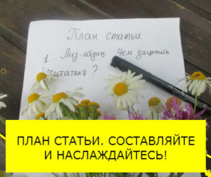 План статьи_мини